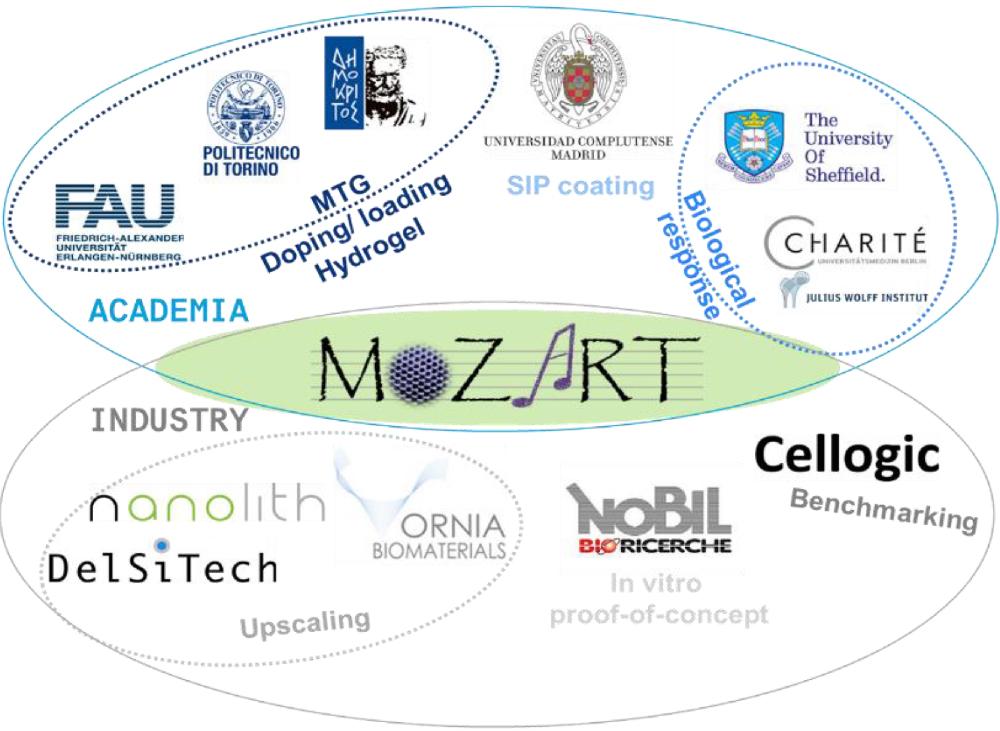Friede Springer Stiftung – Stipendienprogramm BSRT Berlin-Brandenburg-School for Regenerative Therapies (Biologisierte Medizintechnik) an der Charité, Berlin